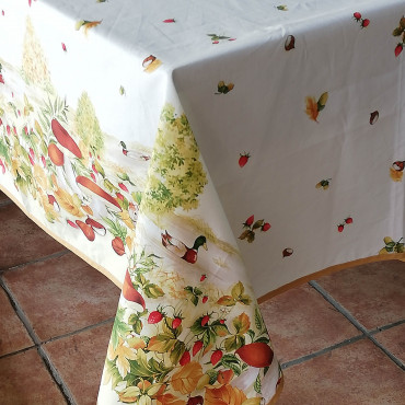 Tablecloths Print Exclusive Designs Cotton Satin